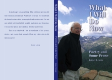 What I Will Do Now - book cover design