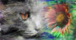 Cat & Flower - Photoshop montage & Corel Painter