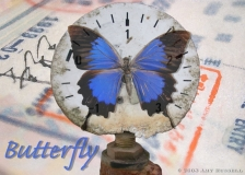 Butterfly - Photoshop montage